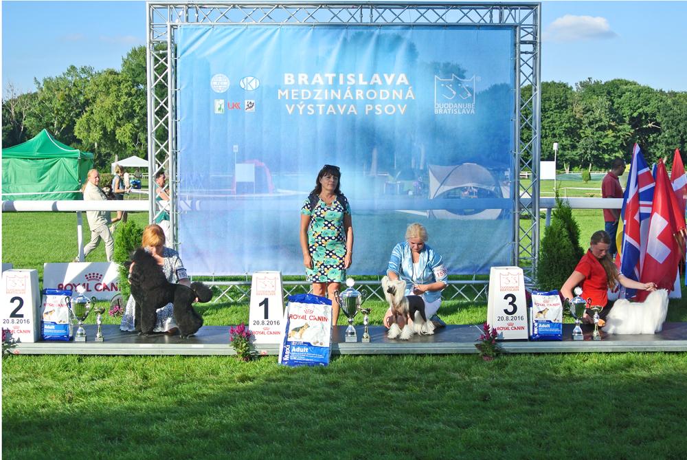 FCI group IX - BIS CACIB Bratislava (Slovakia), Saturday, 20 August 2016