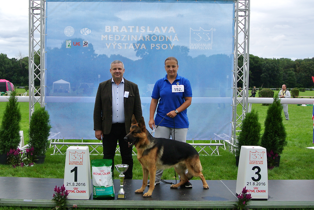 Best Junior of FCI group I - BIS CACIB Bratislava (Slovakia), Sunday, 21 August 2016