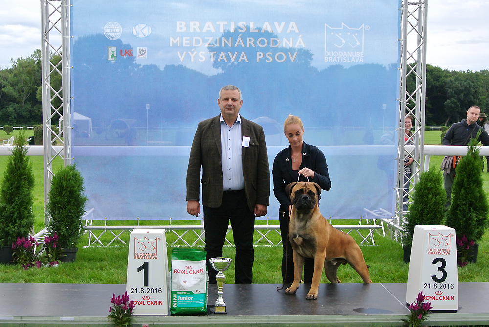 Best Junior of FCI group II - BIS CACIB Bratislava (Slovakia), Sunday, 21 August 2016