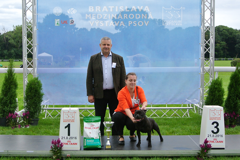 Best Junior of FCI group III - BIS CACIB Bratislava (Slovakia), Sunday, 21 August 2016