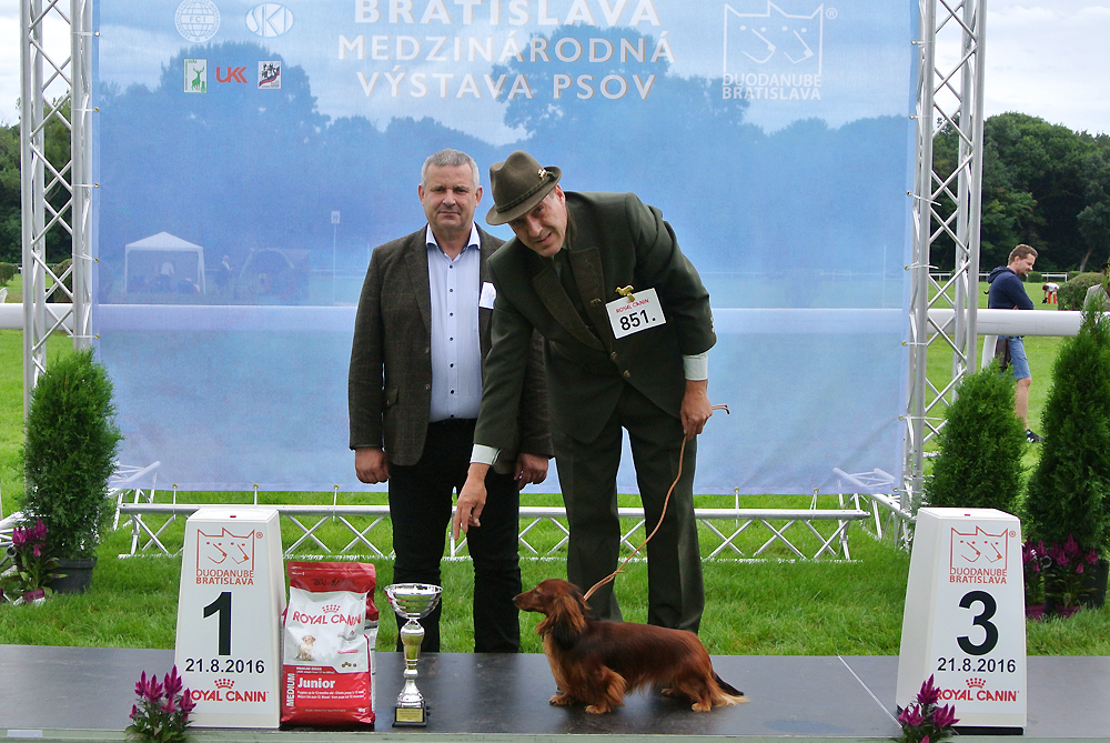 Best Junior of FCI group IV - BIS CACIB Bratislava (Slovakia), Sunday, 21 August 2016