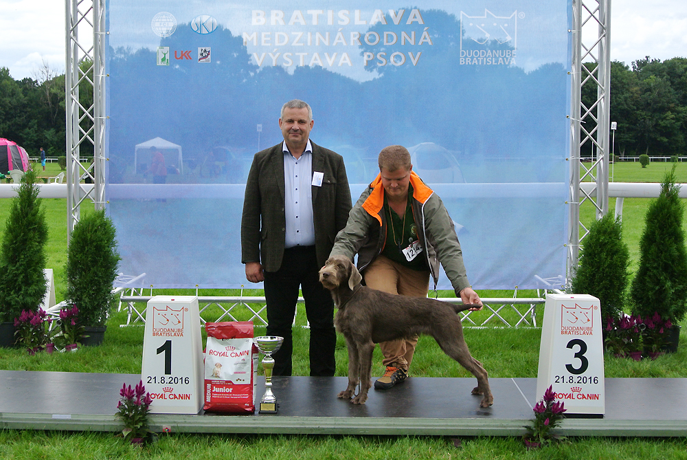 Best Junior of FCI group VII - BIS CACIB Bratislava (Slovakia), Sunday, 21 August 2016