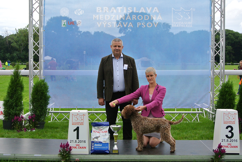Best Junior of FCI group VIII - BIS CACIB Bratislava (Slovakia), Sunday, 21 August 2016
