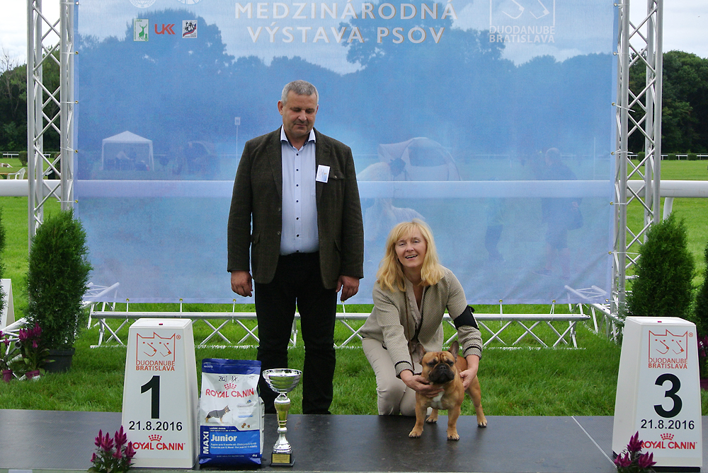 Best Junior of FCI group IX - BIS CACIB Bratislava (Slovakia), Sunday, 21 August 2016