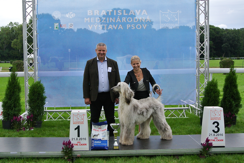Best Junior of FCI group X - BIS CACIB Bratislava (Slovakia), Sunday, 21 August 2016